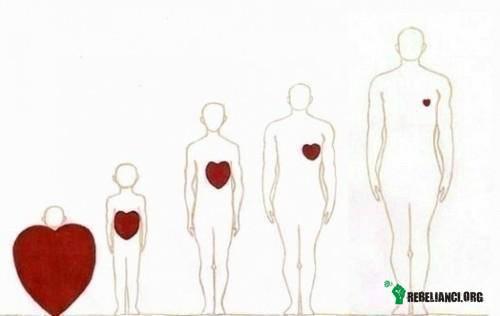 Ewolucja miłości –