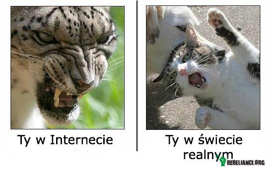 Ty w Internecie –