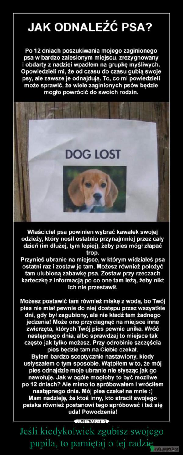 GDY ZAGINIE TWÓJ PIES – Witam, znalazłam bardzo pożyteczną informację, jak odnaleźć psa gdy zaginie.  Może komuś pomoże.